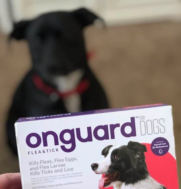 Chewy: 25% OFF Your First Onguard Purchase + New Low Price $39.59